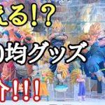 【おすすめ】ドラゴンボールフィギュアや収納に使える100均グッズの紹介!とおちゃんチャンネル