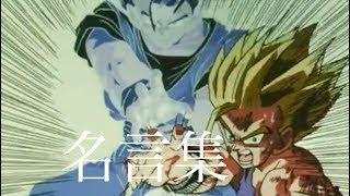 【MAD】ドラゴンボール名言集×運命の日〜魂×魂 ⚔