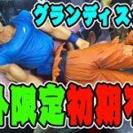 【ドラゴンボール超】海外限定グランディスタネロ!エグイ初期不良