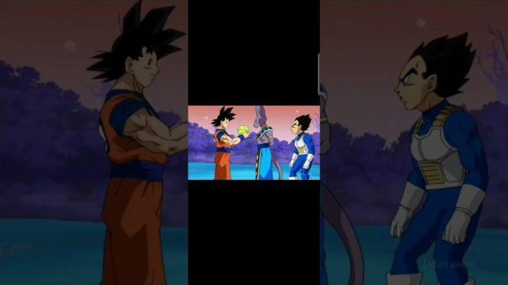Dragon ball Super – Ultra Instinct – ドラゴンボール 超 スーパー   #ドラゴンボール 超 スーパー   Goku  Whis Vegeta Beerus