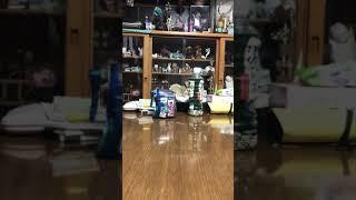 僕が使ってるドラゴンボールカードデッキ見せてみた。