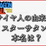 【神マンガ】ドラゴンボール王を決めてみた【Dragon Ball】【ジャンプ】