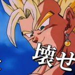 【MAD】〜SuperSurvivor〜ドラゴンボール