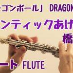 【ドラゴンボール ED】ロマンティックあげるよ/橋本潮【フルートで演奏してみた】DRAGON BALL  Romantic ageruyo