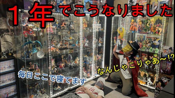 【ルームツアー】収集歴1年!ワンピース・ドラゴンボールフィギュア部屋大公開!!