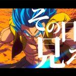 【MAD】ドラゴンボール超 /ブロリー【Dragon ball super broly】『Super survivor』
