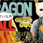 ドラゴンボール無印 出会いから冒険なのそれ?