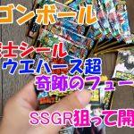 【ドラゴンボール】超戦士シールウエハース超 奇跡のフュージョン SSGR狙って開封!