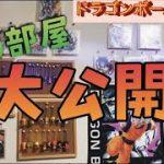 【ドラゴンボール】ドラゴンボールだらけの部屋紹介!好きな漫画も紹介するよ!