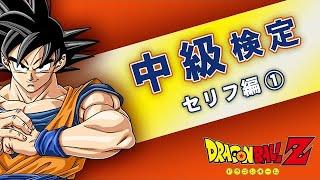 クイズ【ドラゴンボール中級検定〜セリフ編①~】マニア向け!quiz anime DRAGON BALL